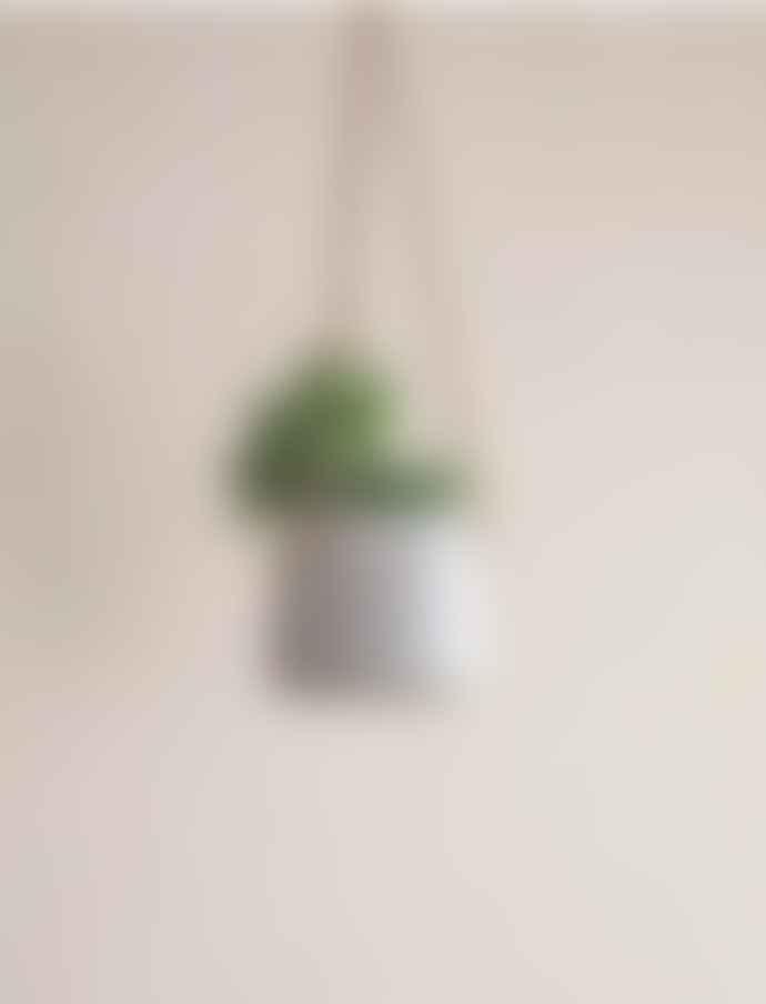 Garden Trading Small  Stratton Hanging Pot