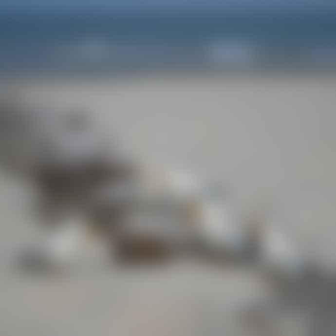 Sjaal met Verhaal Wool Felt Seagull