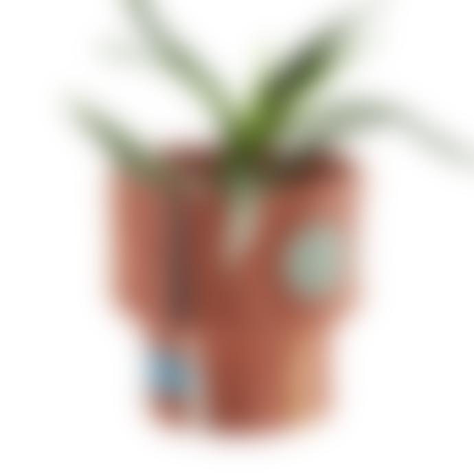 Madam Stoltz Abstract Painted Sculptural Terracotta Plant Pot
