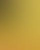 Palm Of Feronia Energise Aromatherapy Pulse Oil 10 Ml