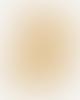 Colorful Standard Chaussettes Hautes Jaunes En Coton Bio Burned Yellow